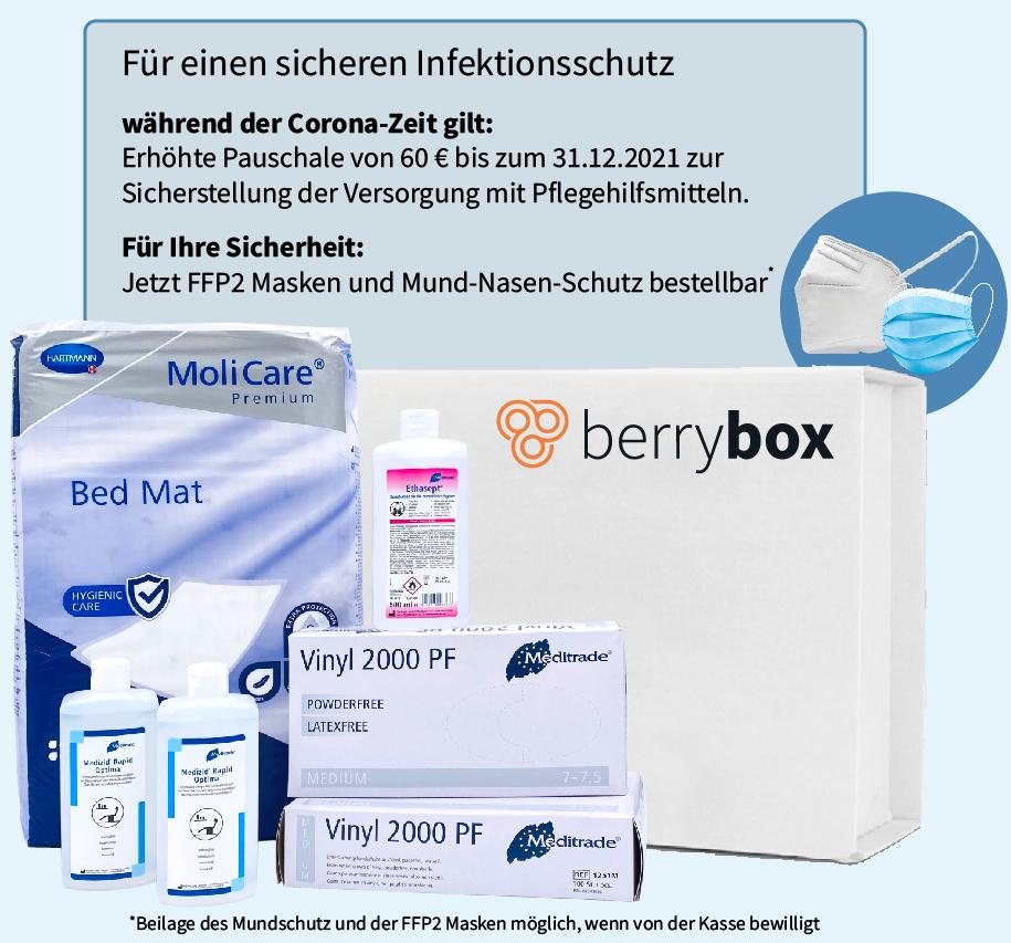 berrybox_header